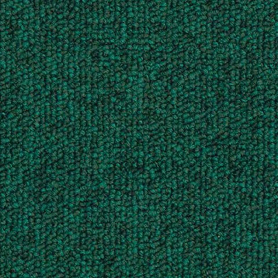Apex640 256 rainforest